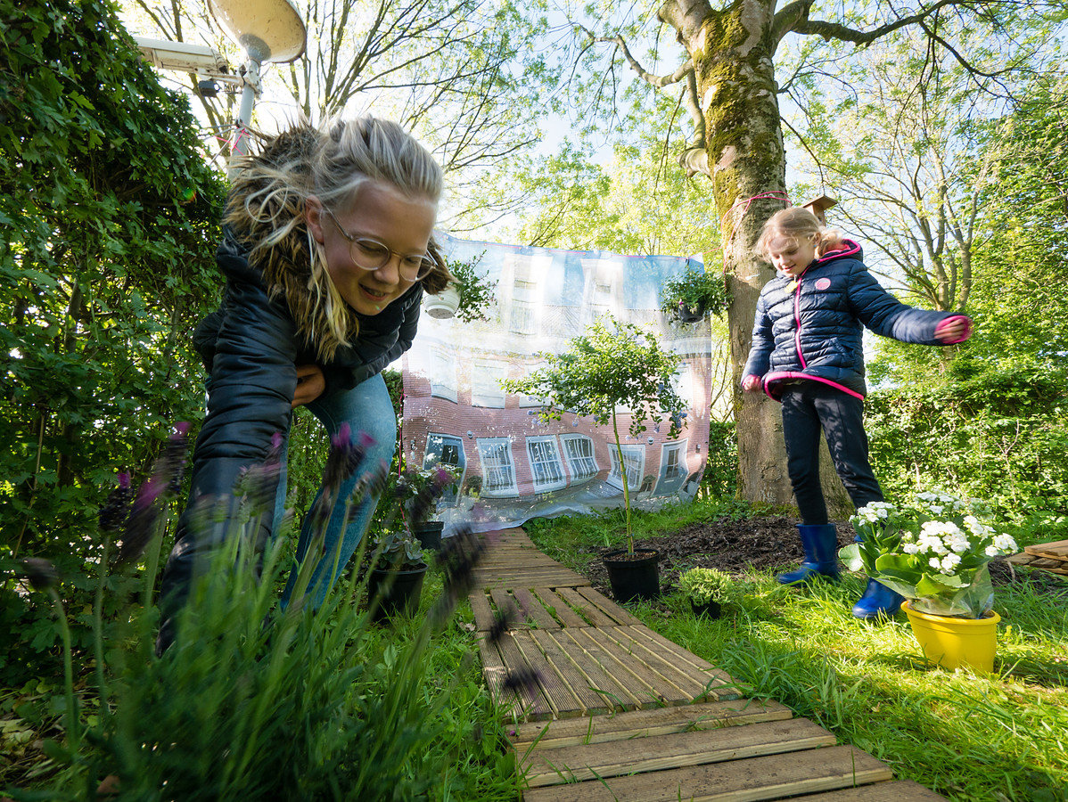 In het kader van Operatie Steenbreek halen kinderen 'stenen' uit een tuin om de tuin vervolgens met planten in te richten.