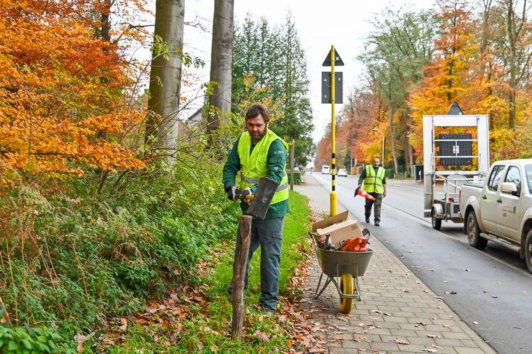 Elke 25 meter wordt langs de Kasteelstraat een wildreespiegel geplaatst.