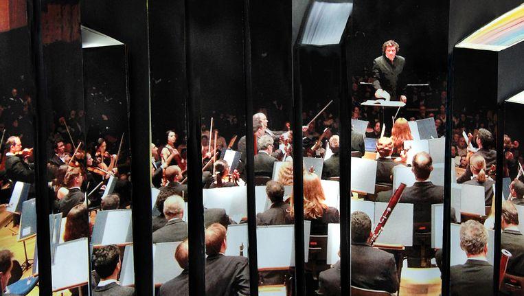 Orkest. Beeld Antonia Hrastar