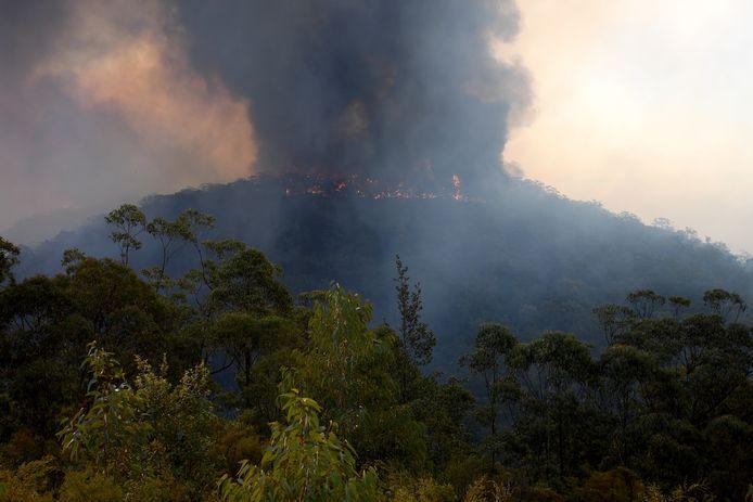 Op dit moment woedden er hevige bosbranden in Australië.