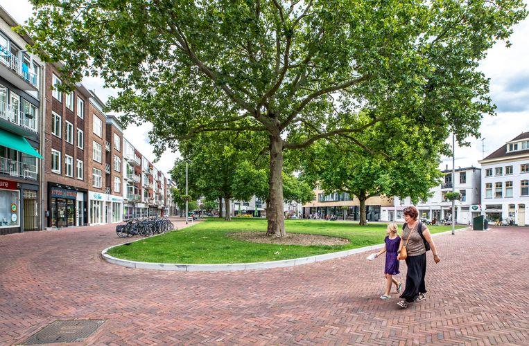 Op het Gele Rijdersplein in Arnhem is de betegeling weggebroken en vervangen door gras en platanen. Beeld Raymond Rutting / de Volkskrant