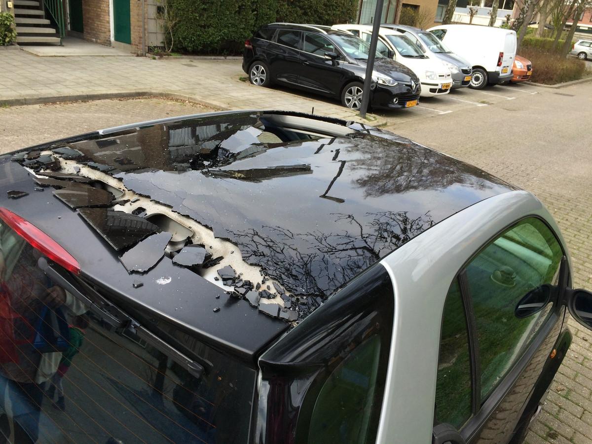 Kraaien gooien stenen op auto's.