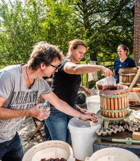Marcel (49) heeft geen wijngaard, maar is toch rosé-wijnboer: Alphenaren brachten hem 240.000 druiven