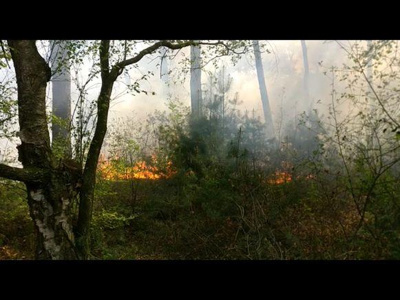 De brand woedde kort maar hevig.