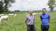 De Vaerendriesch treedt toe tot 'Boeren met Klasse'