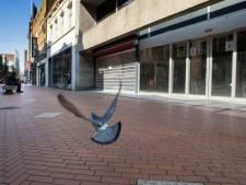 'De grootste huurders hebben de grootste bek', vooral grote winkelketens willen geen of minder huur betalen