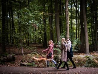 Ondanks kritiek in voorjaar: parkings aan bossen en natuurdomeinen gaan weer dicht
