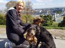 Hondenvrouw Dubbeldam vertrekt definitief naar Roemenië