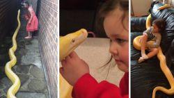 """""""Dit kan toch niet veilig zijn?"""": vijfjarig meisje speelt thuis met pythons"""
