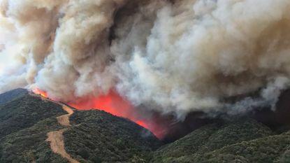 Apocalyptische bosbrand dwingt nieuwe stad in Californië tot evacuatie