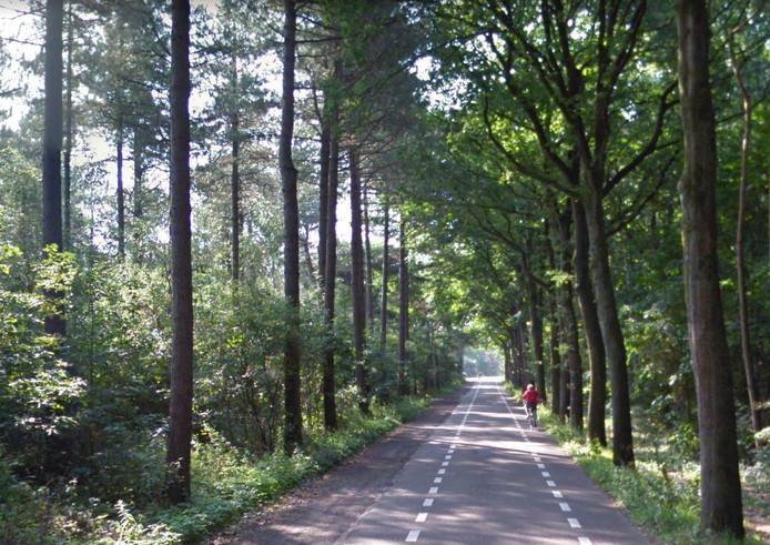 De Bergsebaan in Oosterhout.