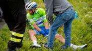KOERS KORT. (12/4) Alaphilippe rijdt Brabantse Pijl - Manager Kittel reageert furieus op uitspraken Van den Broeck