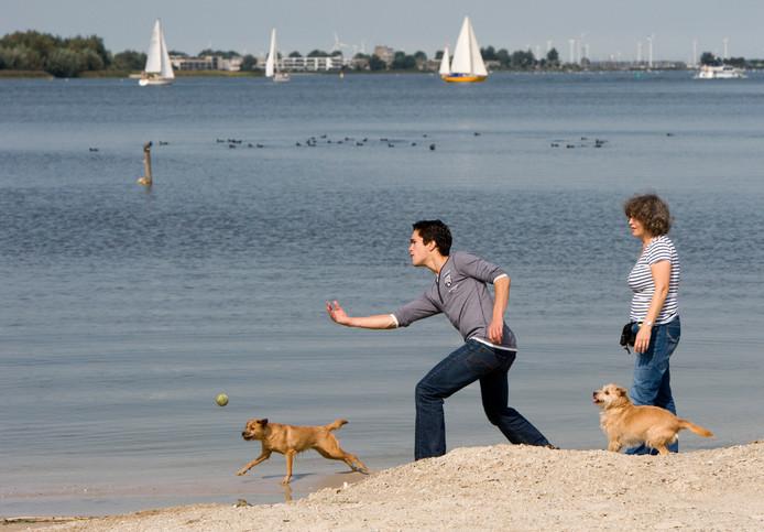 Strand Horst geldt in het laagseizoen tussen 1 oktober en 1 mei als een van de zeven losloopgebieden voor honden in de gemeente Ermelo.