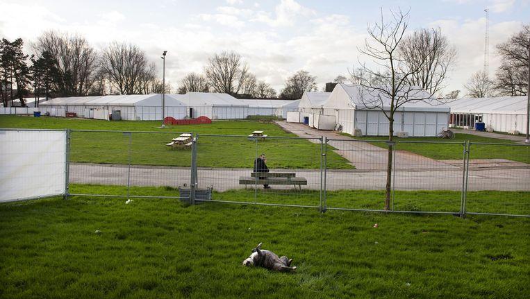 Het opvangkamp in Zaandam Beeld Olaf Kraak