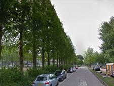 Cadeaubomen universiteit laten zich niet verplanten naar Paardenveld