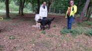 Eerste hondenlosloopzone aan de Akker geopend
