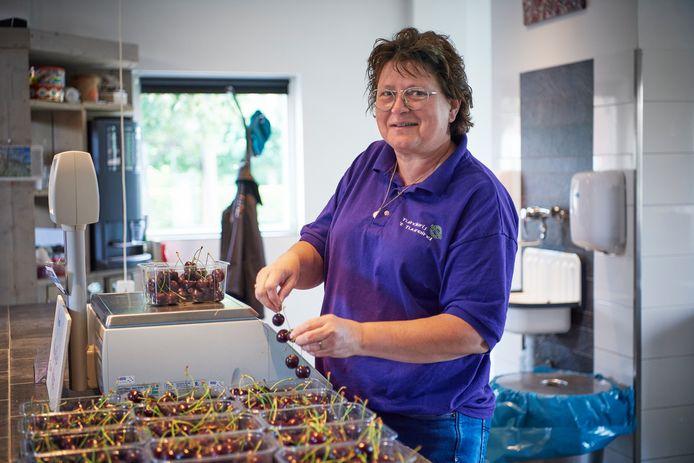 Riek-Jan Pittens weegt kersen af in haar boerderijwinkel.