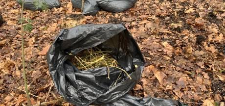 Twintig zakken hennepafval gedumpt