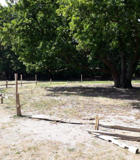 Vandalen vernielen hek dat tachtig jaar oude bomen op het Limvioveld moet beschermen
