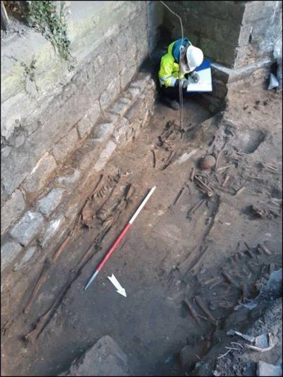 De opgravingen aan de Sint-Baafskathedraal brachten heel wat skeletten aan het licht