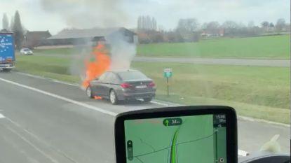 VIDEO: Wagen vat vuur op E34 in Assenede: geen gewonden