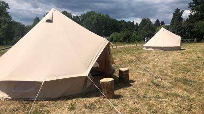Buitengewoon kamperen in een tipitent kan je voortaan in het Troostembergbos