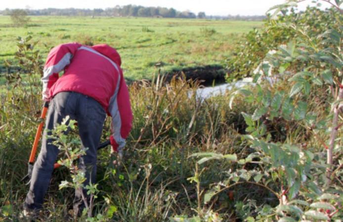 Een vrijwilliger uit de werkgroep Vrijwillig Landschapsbeheer.