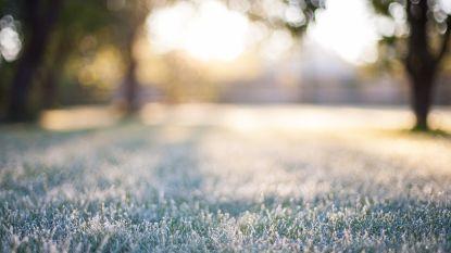 IJskoud: ook overdag komen temperaturen niet boven vriespunt