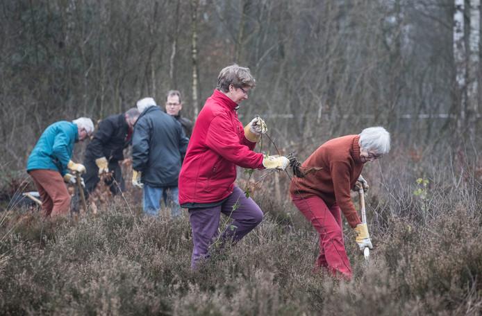 Vrijwilligers maken van terrein voormalig mobilisatiecomplex aan Fransekampweg weer natuurgebied.