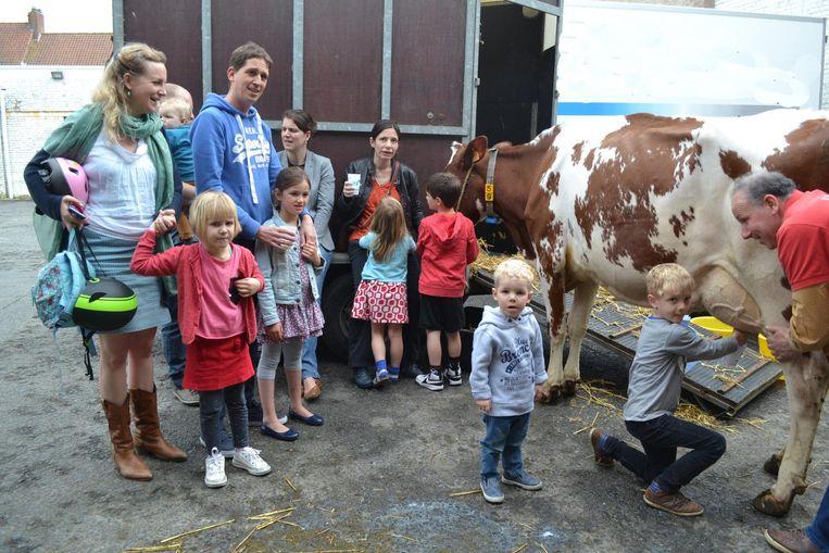 Melk komt nog altijd vers van de koe. Deze les kregen de kinderen op de indoormarkt Lokaal van boer Lieven.