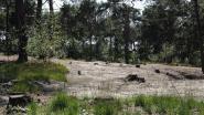 Openbaar onderzoek naar natuurinrichting in De Liereman