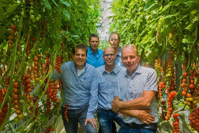 De mensen achter Duijvestijn Tomaten. Vooraan directeur Ad van Adrichem (links), Remco Duijvestijn (m) en Ted Duijvestijn. Achter Peter Duijvestijn (links) en Ronald Duijvestijn.