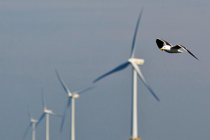 Windmolenpark voor de kust van IJmuiden dat beheerd wordt door onder meer Shell