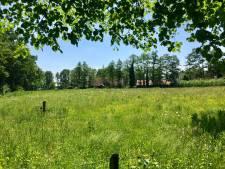 Verzet in Ootmarsum tegen bouw zes villa's