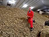 Stilvallen vraag naar diepvriesfriet voor horeca raakt aardappelsector: 'Situatie is dramatisch'