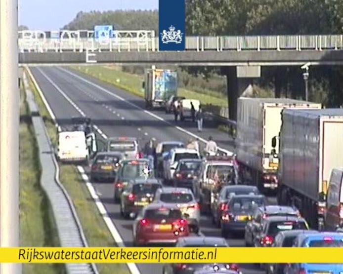 De file tussen Apeldoorn-Zuid en Twello.