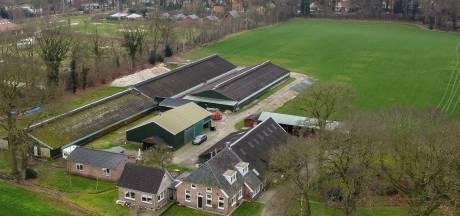 Twijfels over nieuwbouw op plek kippenboerderij IJhorst