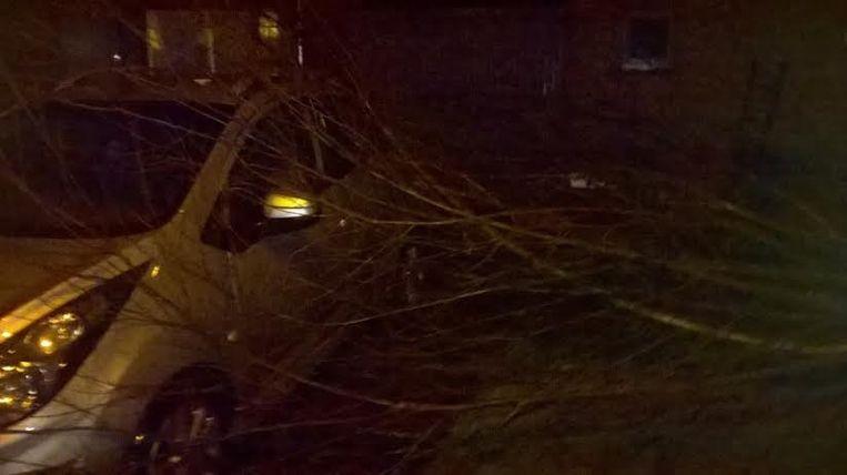 In de Stuiverwijk in Nieuwpoort viel een boom op een auto.