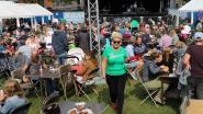 """Wolken maken plaats voor warme zonnestralen tijdens de Herenthoutse Parkfeesten """"naar schatting 1500 mensen komen langs"""""""