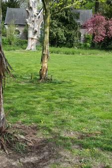 Vernielde bomen blijken trainingsobject voor hondengevechten