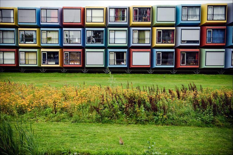 Containerwoningen op het studentencomplex Uithof van de Universiteit Utrecht. Beeld Hollandse Hoogte / Erik van 't Woud