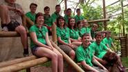 Scoutsgroep stelt Olmenfeesten uit tot september