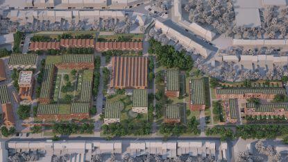 Roeselare is voorstander van 'tiny forests'