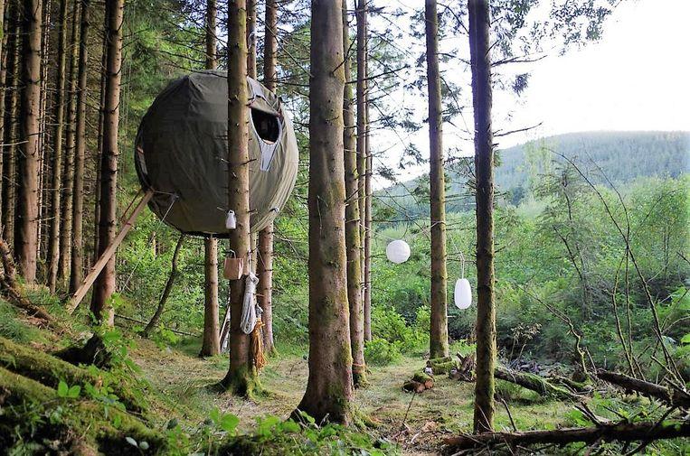 Tree Tent - Jason Thawley