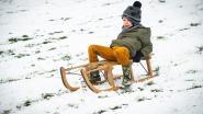 IN BEELD. Sneeuw zorgt voor winterpret in Dilbeek