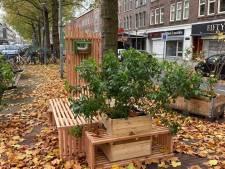 Kunstwerk 'Rust in de Reuring' op Zuid na roerige maandagavond compleet verdwenen