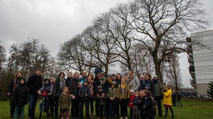 Wilde Bernadettes verzamelen 535 handtekeningen tegen kappen kastanjeboom
