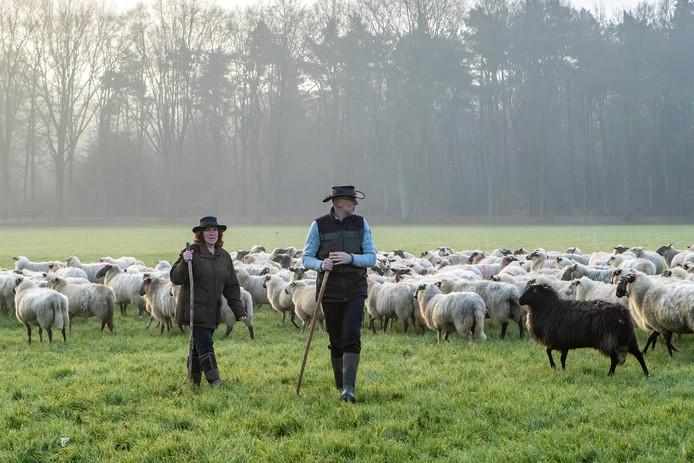Elly en Harrie Jansen bij de kudde in Warnsveld. ,,Onze kinderen moesten wel aan het idee wennen.''