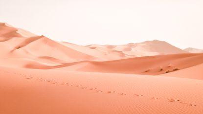 Zes woeste woestijnen die scoren op Instagram