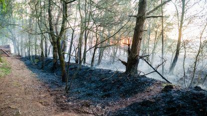 Code rood blijft van kracht in Limburgse natuurgebieden
